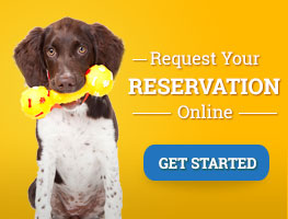 Request a Reservation